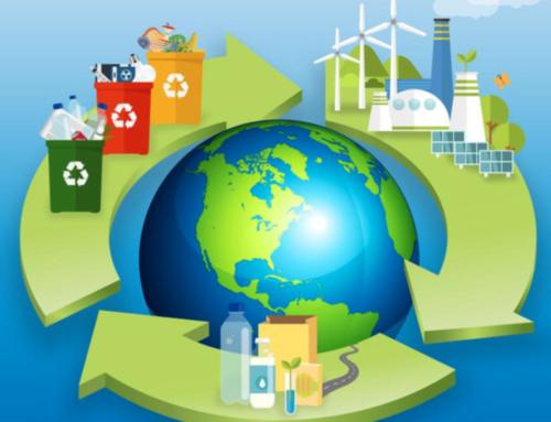 Cos'è l'economia circolare e perché è importante per il futuro del nostro pianeta?